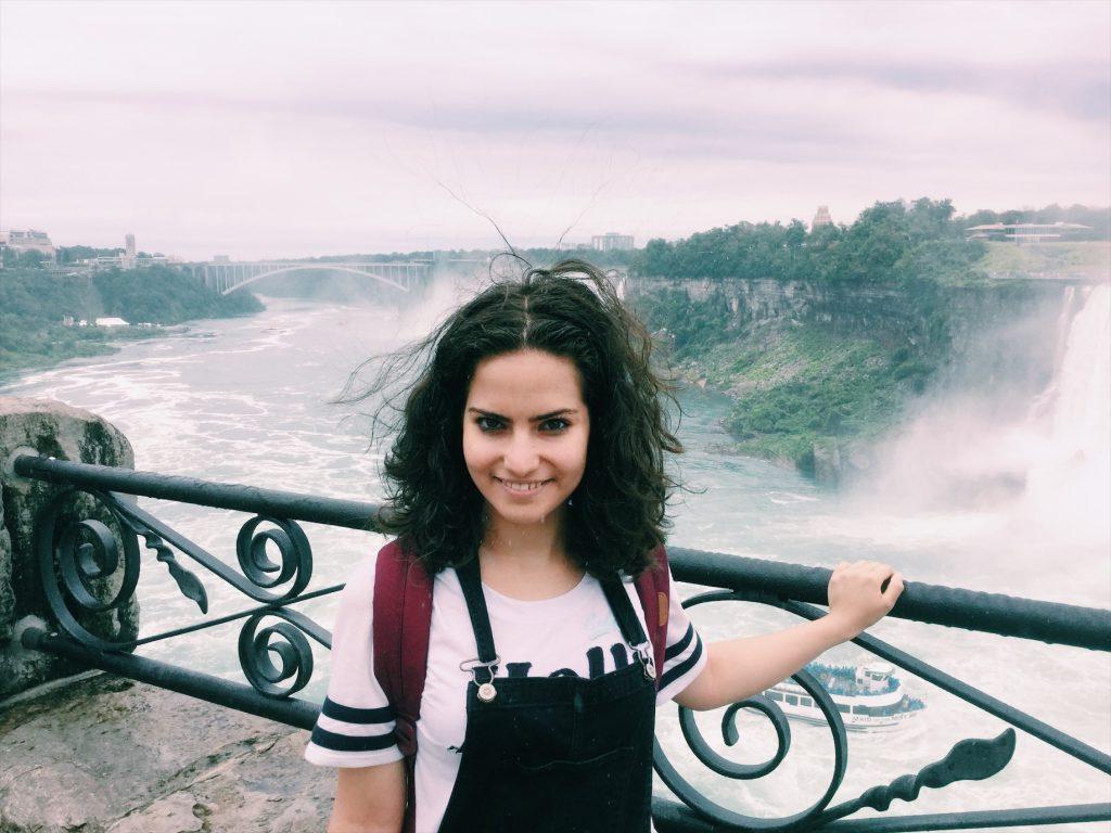 Niagarafälle 2